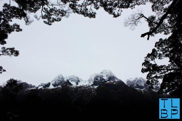 Milford Sound National Park