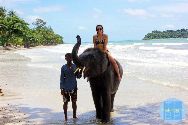 Koh Chang, Elephant Fun