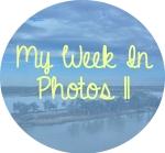 myweekinphotos11