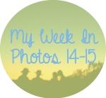 myweekinphotos14-15