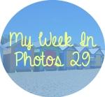 myweekinphotos29