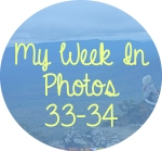 myweekinphotos3334