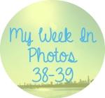 myweekinphotos3839