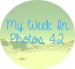 myweekinphotos42