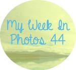 myweekinphotos44
