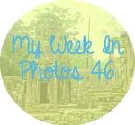 myweekinphotos46