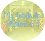 myweekinphotos6-8