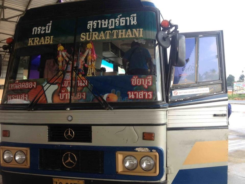thaibus