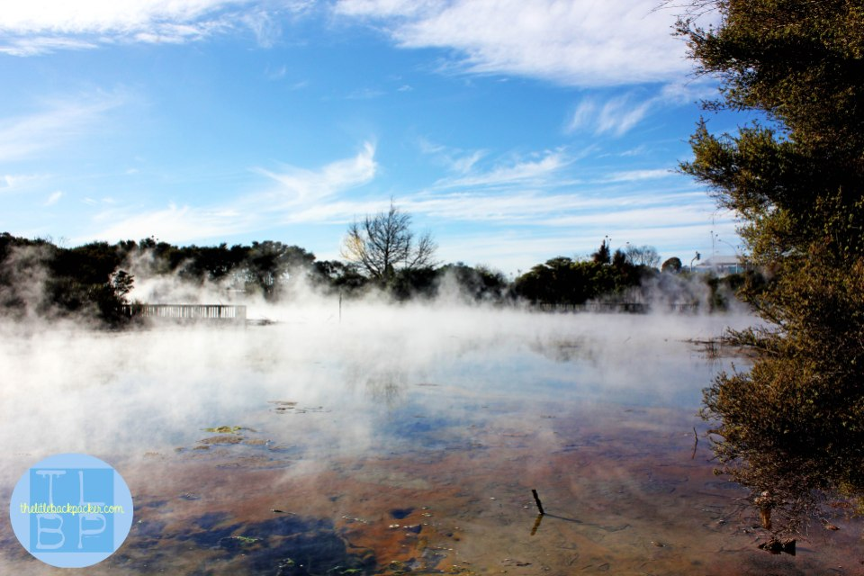 The geothermal town of Rotorura on the North Island of New Zealand